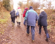 The Walking Group near Corsley